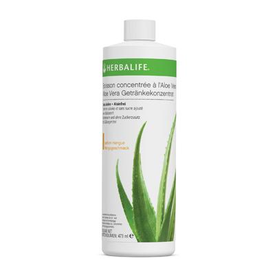 1065 Herbal Aloe - Préparation pour Boisson aromatisée à l'Aloe Vera Mangue