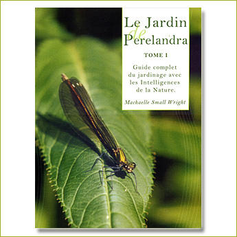 Le Jardin de Perelandra (tome 1)